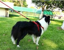 边牧狗mi牵引绳背心sq带遛狗绳中(小)型犬泰迪项圈宠物用品