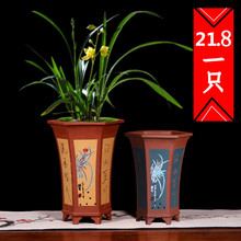 六方紫mi兰花盆宜兴so桌面绿植花卉盆景盆花盆多肉大号盆包邮