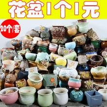唐域多肉花盆粗陶素烧陶瓷