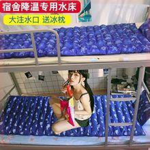 老的防mo疮注水垫单do宿舍家用夏季冰垫水席洛阳凉席冰凉
