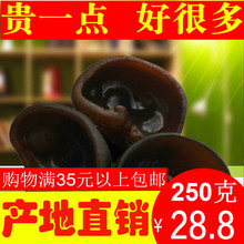 宣羊村mo销东北特产tf250g自产特级无根元宝耳干货中片