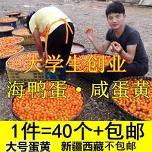 正宗水mp农夫40枚sp黄酥自制月饼粽子烘焙真空新鲜包邮