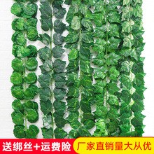 仿真葡ms叶假花藤条tg物树叶绿叶水管道吊顶装饰塑料绿萝叶子