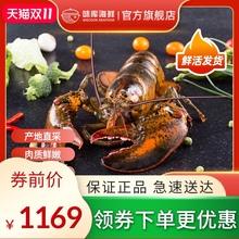 龙虾波mu顿鲜活特大yi龙波斯顿海鲜水产活虾1400-1600g