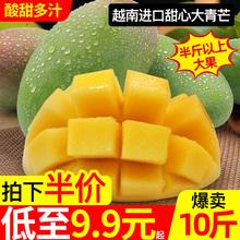 正宗越ni进口甜心大tu0斤装水果新鲜当季特大现摘生吃酸芒
