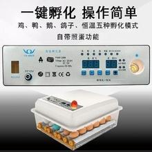 。鸡鸭ni鸽子蛋孵蛋tz温自动型卵化器带照蛋灯(小)鸡中型浮化机
