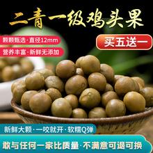 包邮2ni20天长野ku果新鲜鸡头米二青一级带壳茨实非苏芡米500g
