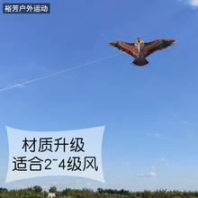 新款老鹰风筝卡通风筝潍坊