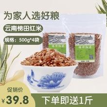 云南特nk元阳哈尼大dc粗粮糙米红河红软米红米饭的米
