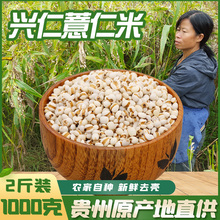 新货贵nk兴仁农家特tz薏仁米1000克仁包邮薏苡仁粗粮