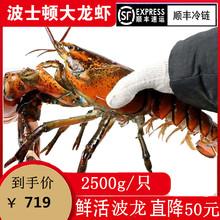 野生波nm顿澳洲鲜活vw龙奥龙波斯顿海鲜水产大活虾5斤