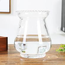 欧式大nu特价玻璃花ng龙蛋花瓶绿萝水培花瓶简约水养植物器皿