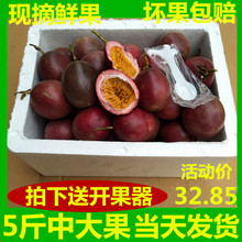 现摘健or新鲜高山大rk果西番莲热带特产5斤中大果包邮