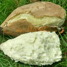 高州爆ox王蕃薯 面ny薯 新鲜粉番薯 白肉干面地瓜5斤包邮