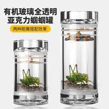 手工蛐pe精品蝈蝈筒ar透明虫具昆虫笼葫芦蝈蝈罐竹制实木有机