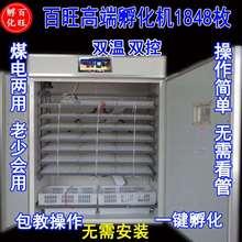 全自动pi床家用孵(小)el子蛋抱化箱鹌鹑蛋乳蛋箱鸡化机器
