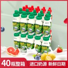 健康快pjad钙奶整qw哈哈大瓶草莓味100ml宝宝早餐酸饮品