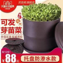 【年内pl降】灵苗阁tc芽罐生豆芽机家用全自动大容量发豆芽机
