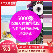 室内设po方案软装色pi卡搭配网页设计师搭配色板jpg图片素材