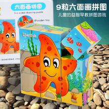 宝宝木po3d立体六al图2-5岁宝宝3益智力早教动物积木(小)孩玩具