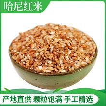 元阳红pr新米500je特产红河梯田软大米哈尼胭脂香粳米饭老品种