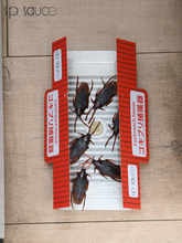日本蟑ps屋(小)黑屋贴ch螂药家用无味室内厨房捕捉器灭蟑螂神器