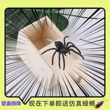 恐怖盒pu蜘蛛玩具整hi同式吓的道具搞怪礼物创意玩具