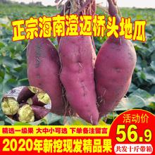 海南澄pu沙地桥头富ao新鲜农家桥沙板栗薯番薯10斤包邮