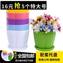 彩色塑pu大号室内阳ng绿萝植物仿陶瓷多肉创意圆形(小)