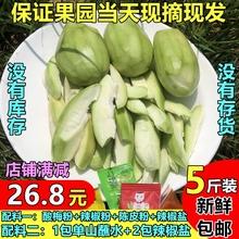 酸脆生qd5斤包邮孕qg青福润禾鲜果非象牙芒