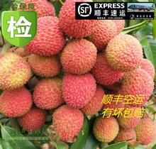 冰冻新qd水果 黑叶cs笑白糖罂 桂味没货3斤顺丰空运