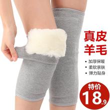 羊毛护qh保暖老寒腿kx加厚男女士老的膝盖防寒关节骑车睡觉棉