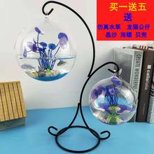 创意摆qi家居装饰斗ya型迷你办公桌面圆形悬挂金鱼缸透明玻璃