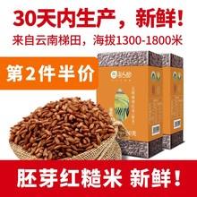 云南红qx元阳哈尼胚dt包装新米红大米香米