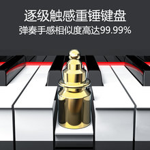 特伦斯r88键重锤数8o成的初学者电钢幼师电子钢琴学生自学