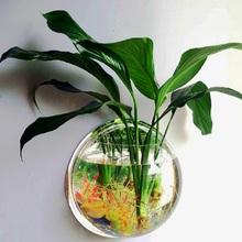 客厅墙壁挂饰ra3用悬挂款mo上的花盆 壁挂花免打孔鱼缸植物
