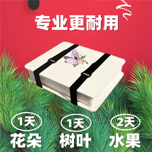 押花器 diy自制植物标本压花器套装ra15工制作rl工具压花板