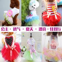 宠物(小)rb衣服春夏装ow熊(小)型犬夏季薄式可爱公主裙子