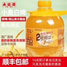 青岛永rb源2号精酿yi.5L桶装浑浊(小)麦白啤啤酒 果酸风味