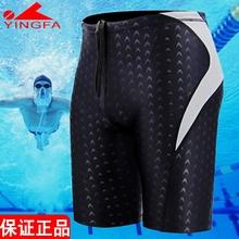 英发男re角 五分泳fl腿专业训练鲨鱼皮速干游泳裤男士温泉泳衣