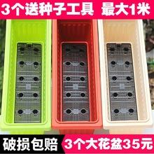 阳台种re盆园艺长方is花槽树脂塑料特大带隔网绿植盆栽