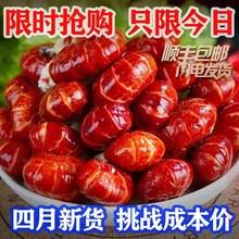 香辣(小)ro虾大号特级ie大尾熟冻虾球冷冻无冰衣整箱麻辣味5斤