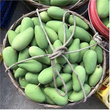 现货新rw水果生吃酸jj西青5斤包邮