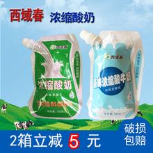 新疆酸奶西域春浓缩益生菌