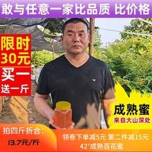 蜂蜜 se花荆条花枣za自产纯正天然 1000g/2斤装