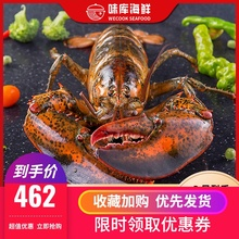 龙虾波si顿鲜活特大co龙波斯顿海鲜水产活虾450-550g*2
