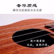 尤克里sm初学者成的le生23寸单板木质碳素弦(小)木吉他宝宝乐器
