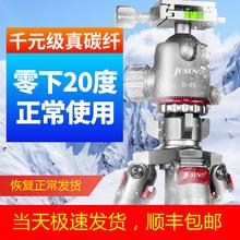 佳鑫悦smS284Cle碳纤维三脚架单反相机三角架摄影摄像稳定大炮