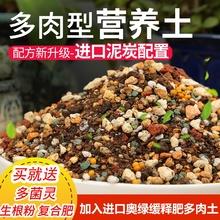 包邮1sm斤多肉专用jw培育种植多肉育苗多肉泥炭土铺面石