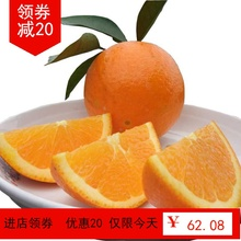 秭归春so伦晚脐橙带ma斤 现摘新鲜橙子时令当季水果非赣南